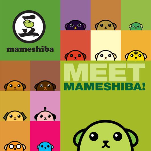 Mameshiba Character Guide